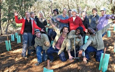 Team Effort for Landcare Results