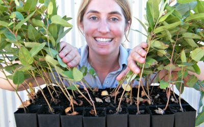 Seeds of Future Landcare Germinate