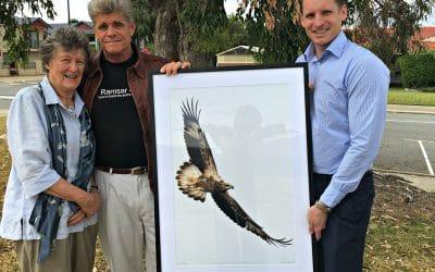 Lone Eagle Symbolises Wetlands Significance