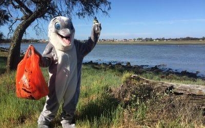 Join In Clean Up Peel Waterways