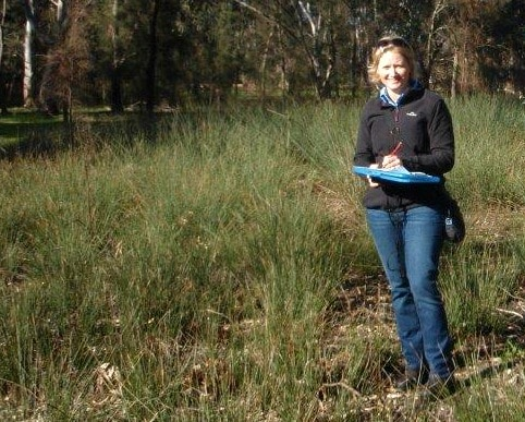 Community funded to restore Tunbridge Gully