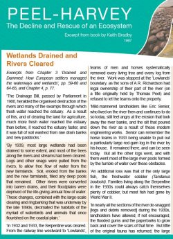 Wetlands Drained and Rivers Cleared