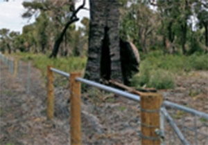 Fire Recovery Funding – Round 2