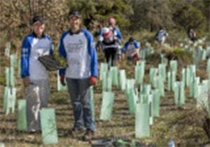 Community Environment Grants – Changing Landscapes
