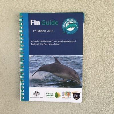 Fin Guide