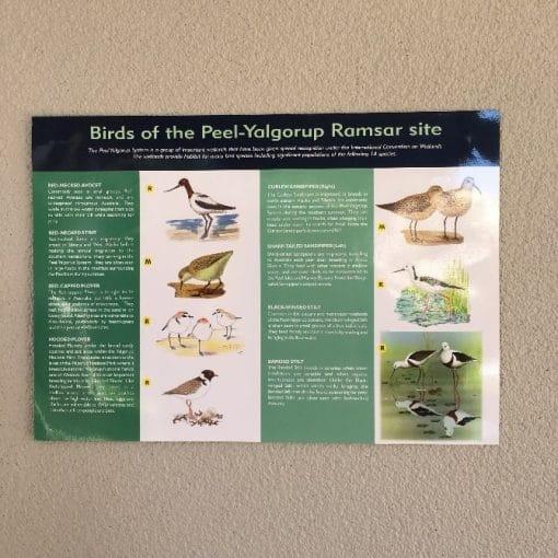 Birds of the Peel-Yalgorup Ramsar site