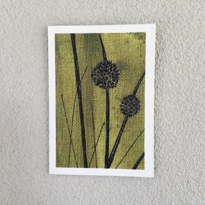 Artwork by Renee Barton – Reeds Card