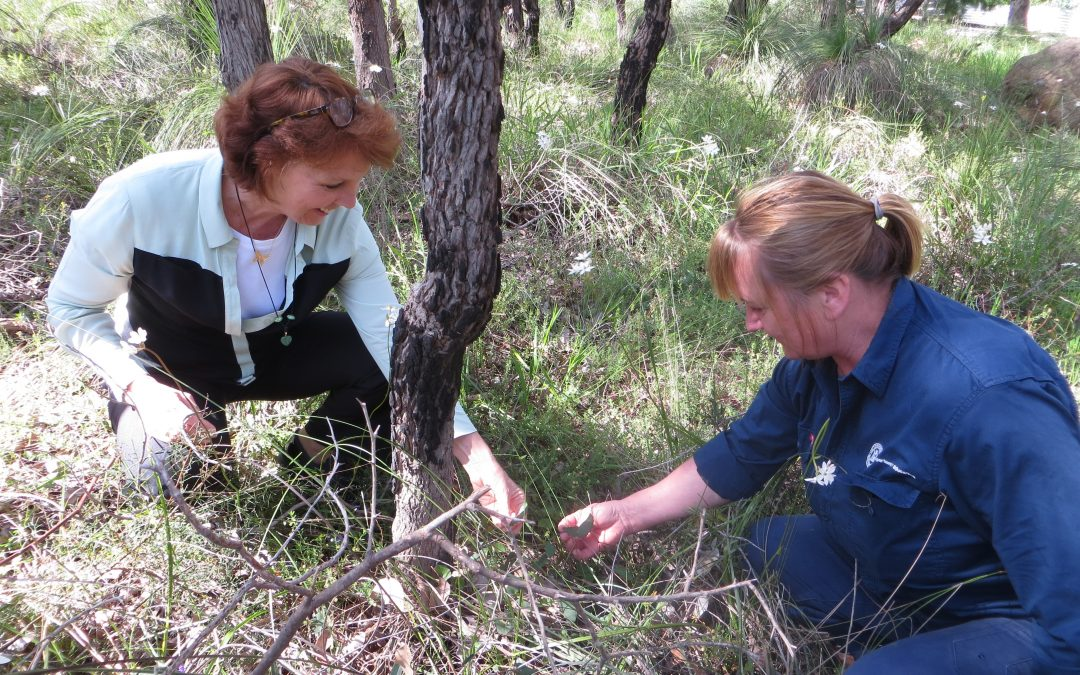 North Dandalup Primary School takes action on bushland
