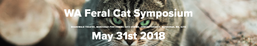 Cat-Symposium-banner
