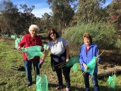 Tunbridge Gully Reed Planting Day