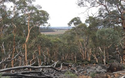 Peel-Harvey Community Environment Grants:  Hotham and Williams Sub-catchment Landowners