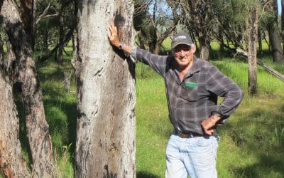 Greening the Peel-Harvey landscape for farming, fodder and fauna