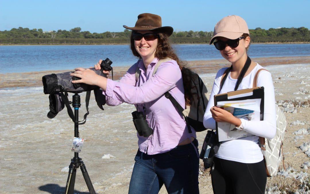 Shorebird2020 Count – For trained volunteers