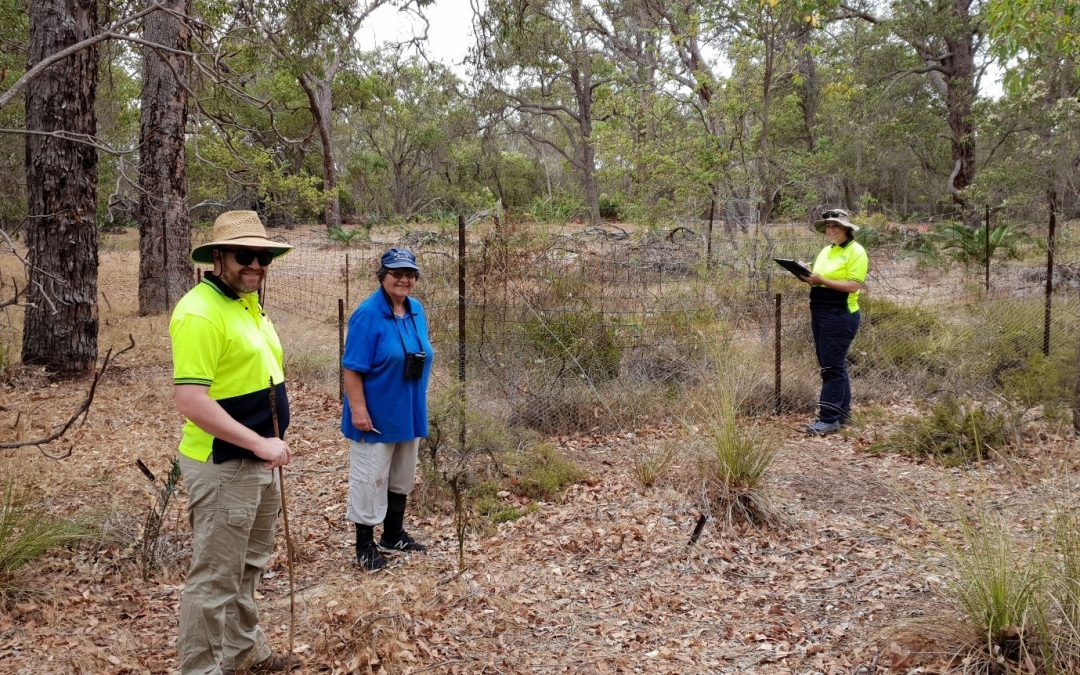 Bushland Action Plan for Lake Mealup