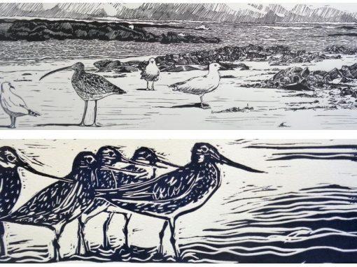 Migratory Bird Print Making Workshop