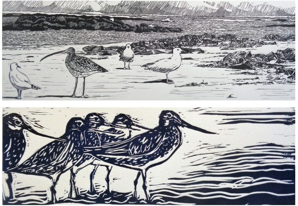 Migratory Bird Print Making Workshop