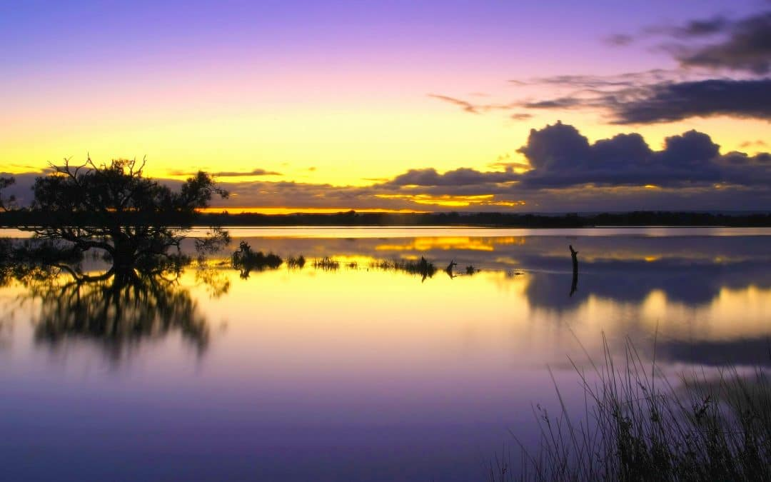 Wetlands Weekender – A fun weekend not to miss!
