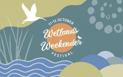 PHCC ready to launch the first Wetlands Weekender