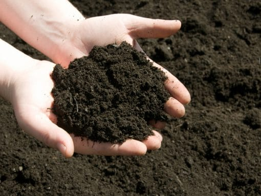 Talkin' Soil Health Conference -Building Natural Capital