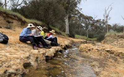 River Action Plan Site Assessments and River Health Assessments complete