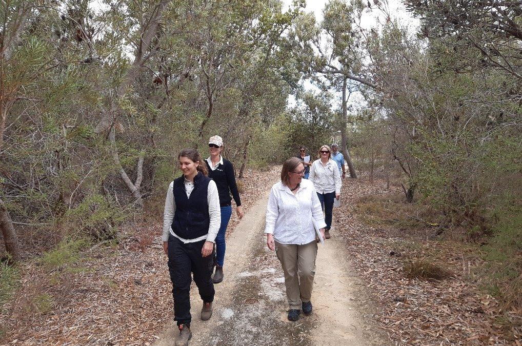 Banksia bush block gets vitamin boost against dieback disease