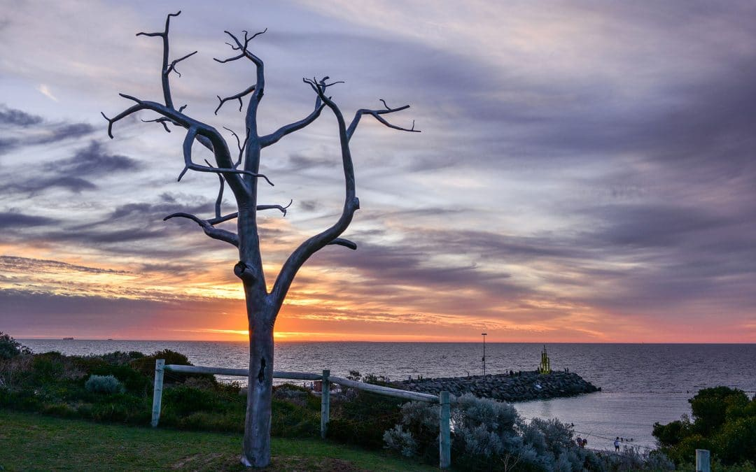 An Evening Spent Celebrating Sculptures by the Sea