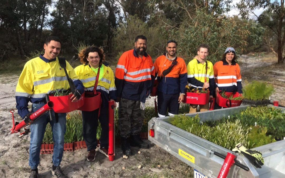 Karu Bilya Banksia Planting Complete