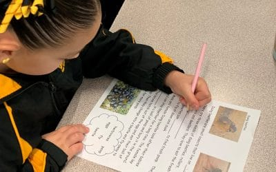 Students Continue to Learn About Dung Beetles