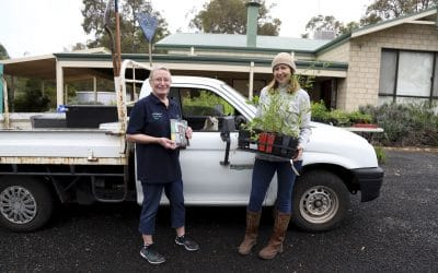 Drive-through Seedling Giveaway a huge success