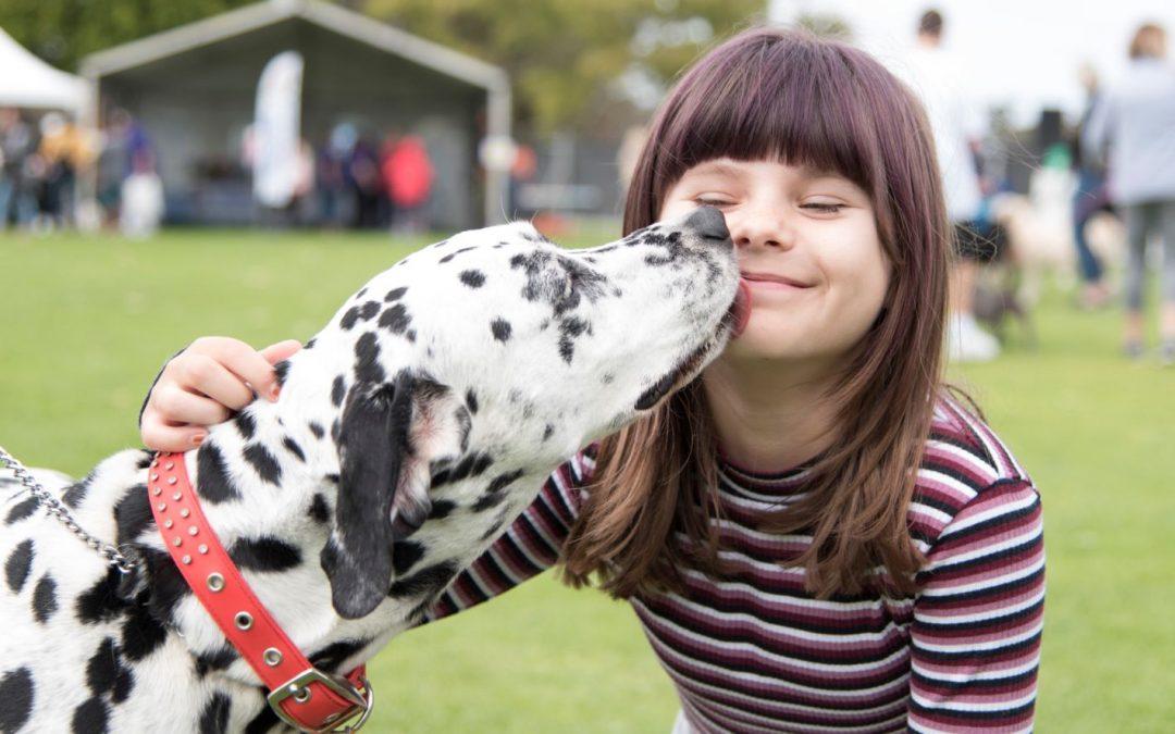 Wetlands Weekender – Dogs Breakfast