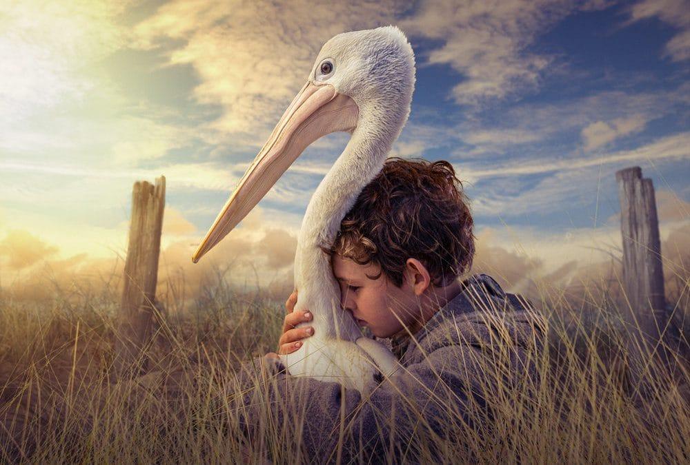 Wetlands Weekender – Movie Night + Ramsar Talk