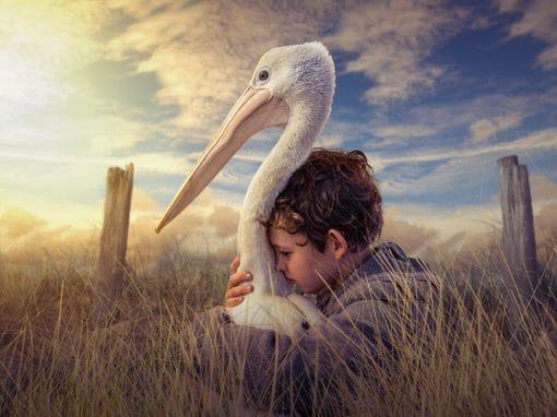 Wetlands Weekender - Movie Night + Ramsar Talk