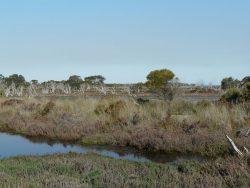 Clean Up the Peel: Len Howard Conservation Park