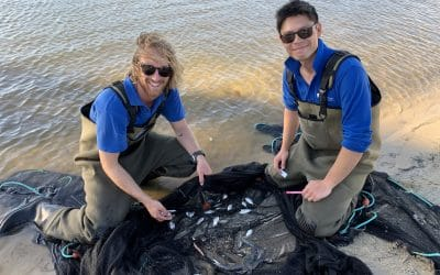 Assessing Waterway Health by Investigating Fish Communities