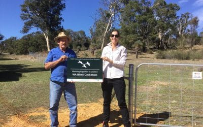 Farmer saving habitat for Black Cockatoos