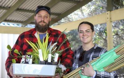 2021 Lake Clifton Seedling giveaway a rabbiting success