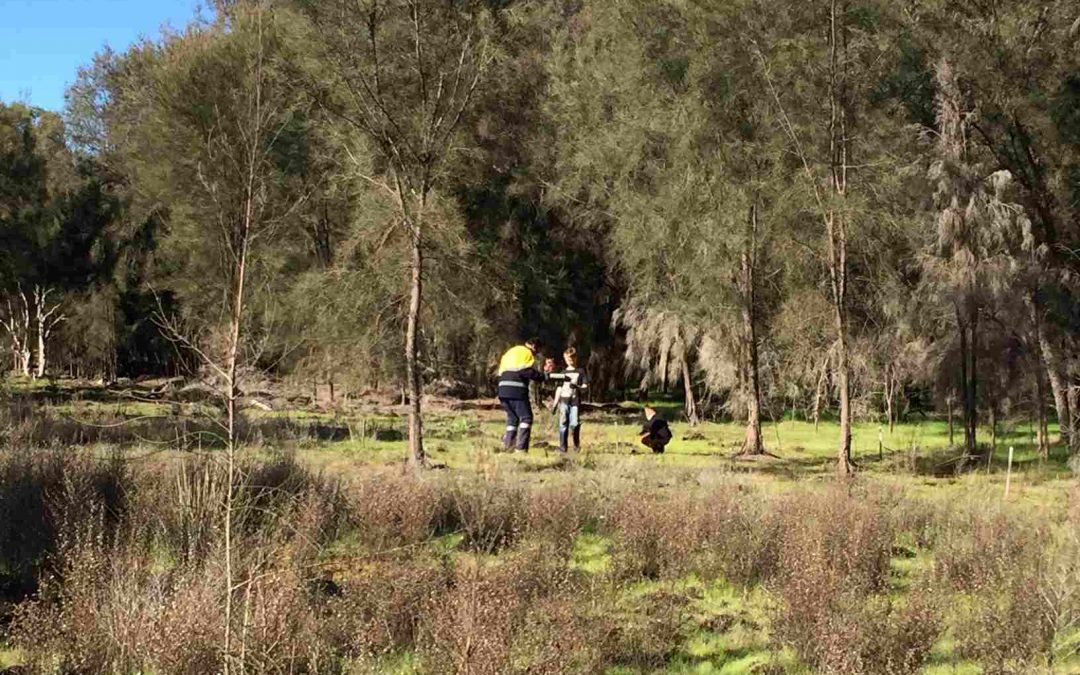 Tunbridge Gully 2021 Planting