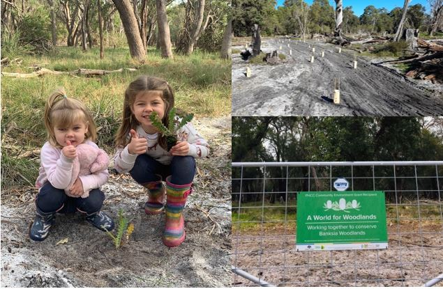Welcome to the next generation of Banksia Woodland custodians