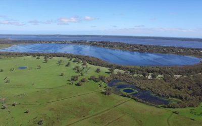 Discover Lake McLarty – a hidden treasure