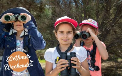 Mandurah set for a weekend of festival fun for nature enthusiasts of all ages!