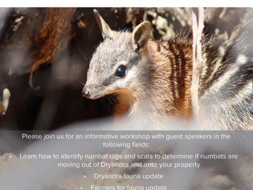 Numbat Dig ID and Dryandra Fauna Update Workshop